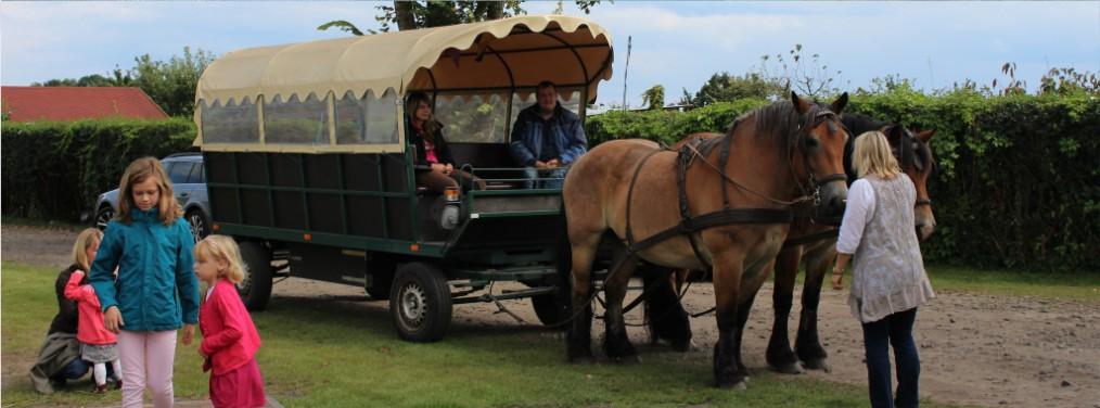 Bild_Pferdekutsche_Tourismus_Eventplanung_Titel
